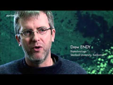 Menschen spielen Gott   Leben aus dem Labor   synthetische Biologie   Dokumentation 2013