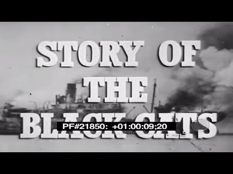 STORY OF THE BLACK CATS - WWII , Navy Fighter Aircraft 21850