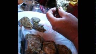 Apalachicola Oysters- An Informal Talk by Jeff Stilwell, Barnacle Bill