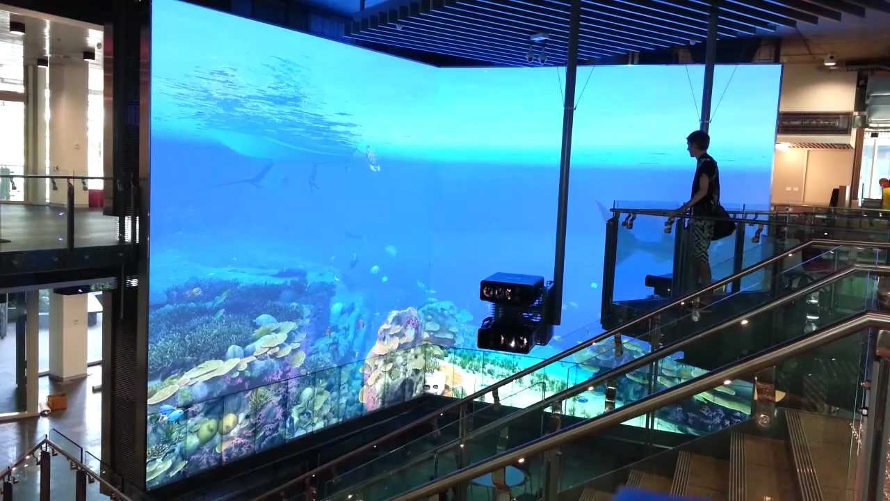 Fish tank queensland - Virtual Reef Qut Warwick Mellow Animator