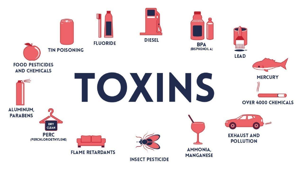 Image result for Toxins