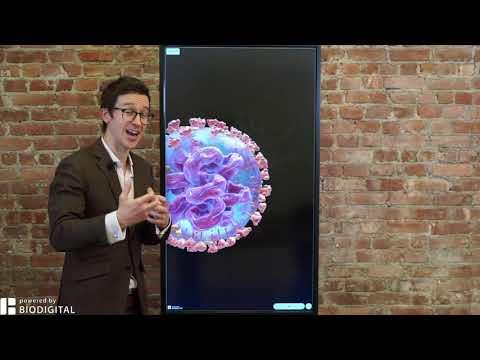 Why is coronavirus so contagious?