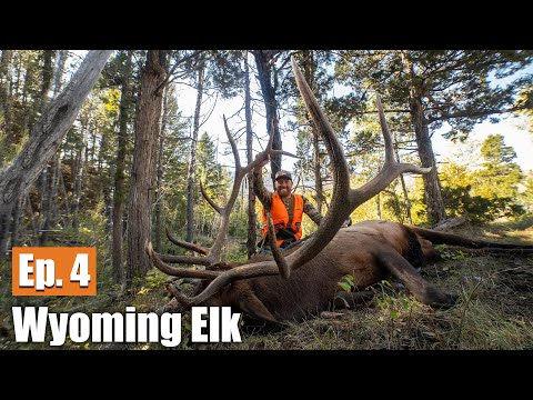 Public Land Bull! (9 Miles Deep) | 2019 Wyoming Elk (Ep. 4)