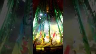Новогоднее шоу Гии Эрадзе