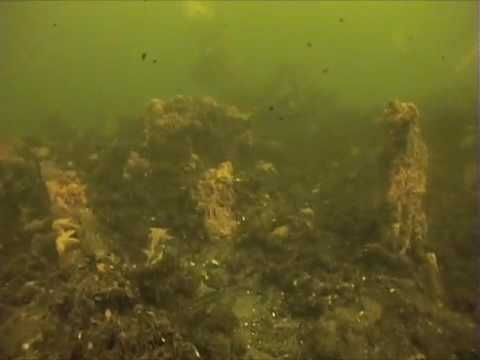 NYC Scuba Diving Ship Wreck Tug Boat