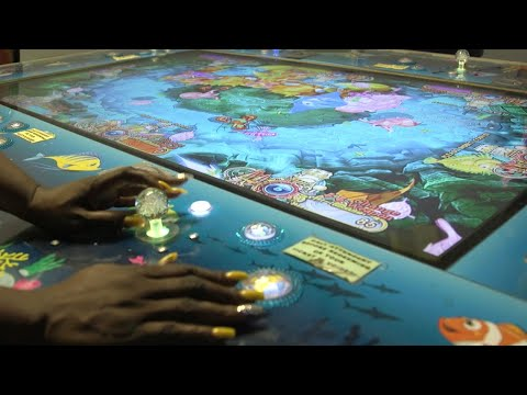 Fish Game Arcades Are Popular In NC — But Are They Legal?