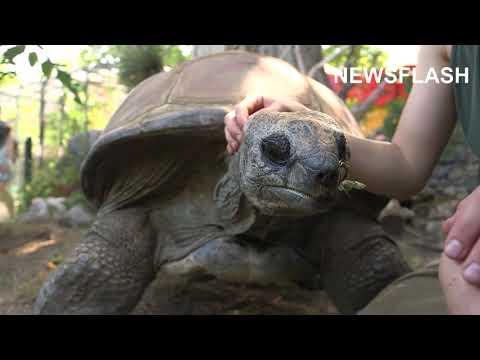 Vienna Zoos Oldest Resident Dies Aged 130