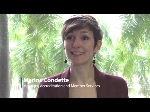 Marine Condette Shares What It's Like Working for AACSB