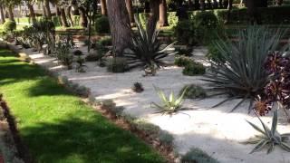 Израиль 2013. кактусовый сад Бахаи в Хайфе.(, 2013-01-15T05:43:14.000Z)
