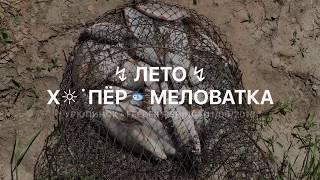 ↯ Лето ↯ Х☼˙пёр   Меловатка * Урюпинск • Feeder fishing • 11/06/2018 *