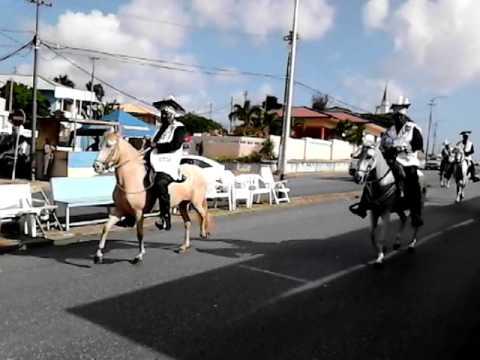 Carnival 2014 horse parade