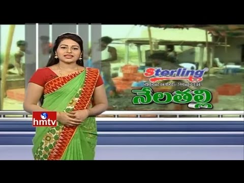 Organic Turmeric & Peanut Farming Success Story By Inspirational Farmers | Nela Talli | HMTV