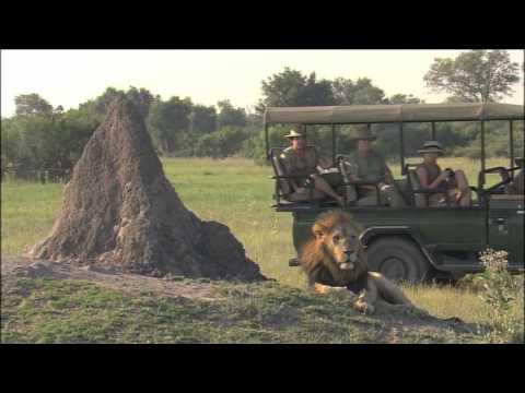 Botswana Safaris, Luxury Botswana Safari Tours