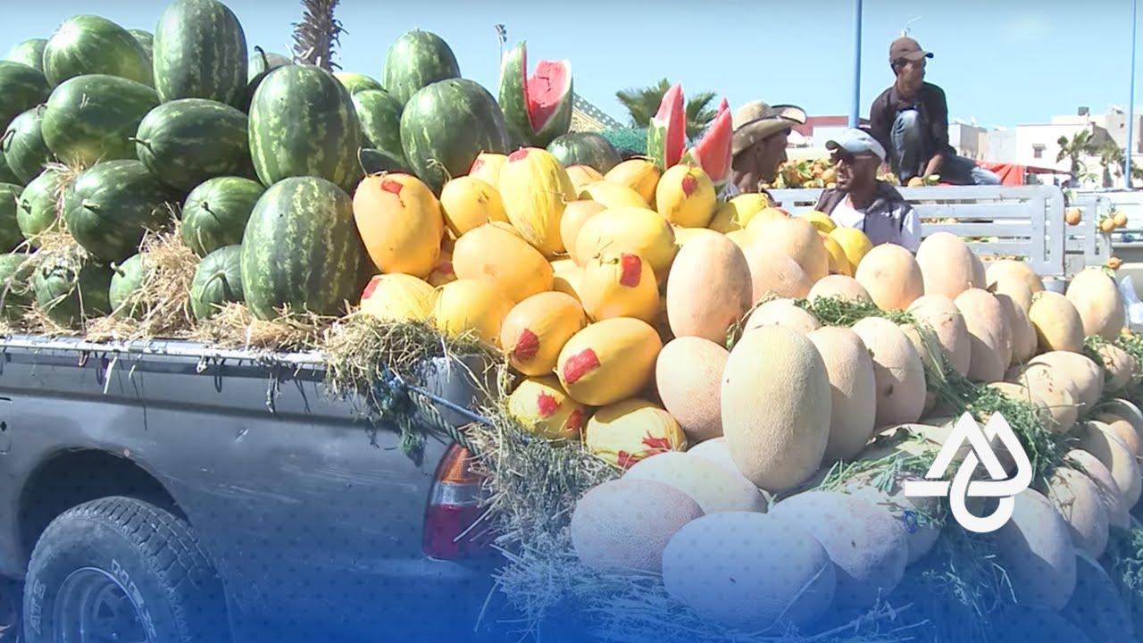 فيديو عن رواج تجارة الفواكه بالداخلة