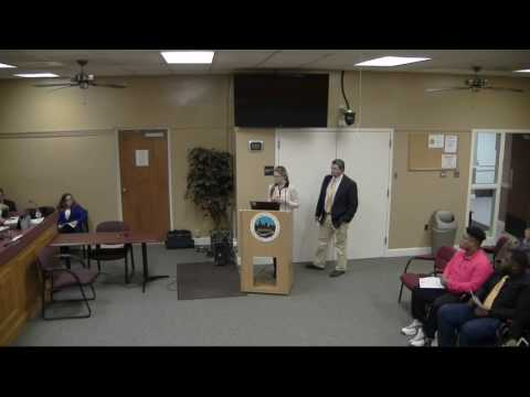 Georgetown City Council Meeting January 23, 2017