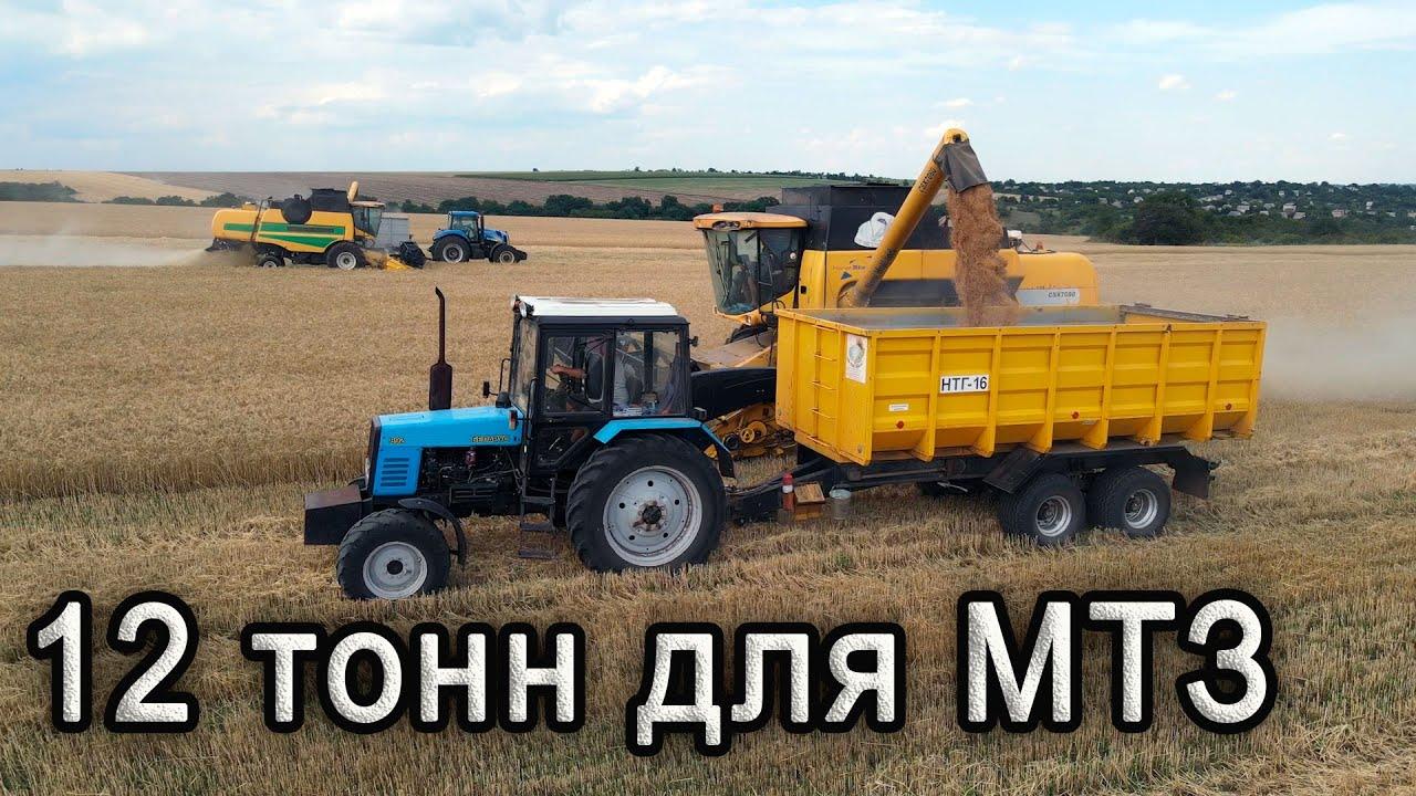 12 тонн зерна для МТЗ  не проблема с полуприцепом НТГ-16.