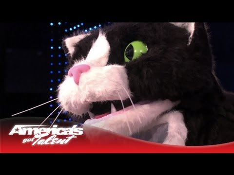 Giant Cat Poops and Throws Up a Hairball on the AGT Stage – America's Got Talent 2013