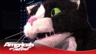 Giant Cat Poops and Throws Up a Hairball on the AGT Stage - America's Got Talent 2013