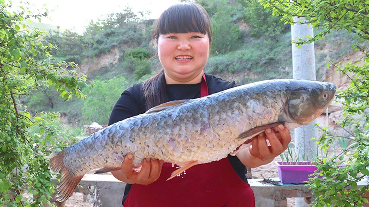 """【陕北霞姐】农忙时节全家上阵种小米,用20斤大草鱼做""""红烧鱼"""",嫩嫩的,和饭店做的一个味!"""