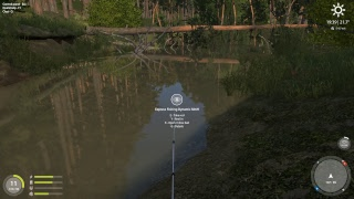 Russian Fishing 4 - Winding Rivulet - Spinning - Level 11
