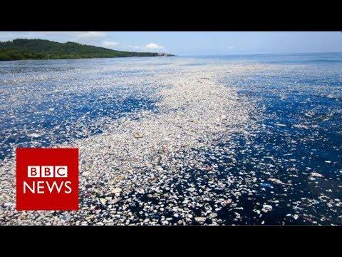 The plastic bottle scheme that could help clean the oceans - BBC News