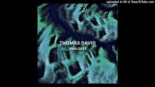 Thomas David - Discontinuance