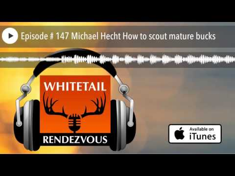 Episode # 147 Michael Hecht How to scout mature bucks