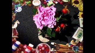 Делаем цветок розы из фоамирана (пористая резина). Мастер класс. Наташа Фохтина