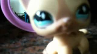Lps dream Thumbnail