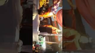 Cheti Chand Mahayatra  Ulhasnagar 29/03/2017