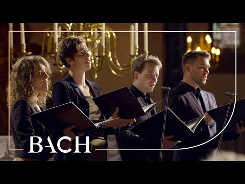 Bach - Cantata Nach Dir, Herr, Verlanget Mich BWV 150 - Sato | Netherlands Bach Society