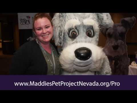 Second Saving Nevada's Pets Conference, Oct. 25, 2018