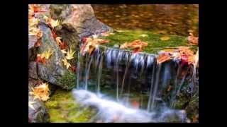 Őszi versek 3 - ERNESTO CORTAZAR zenéjével