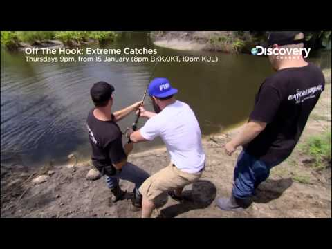Wrestle The Gator | Off The Hook: Extreme Catches 2