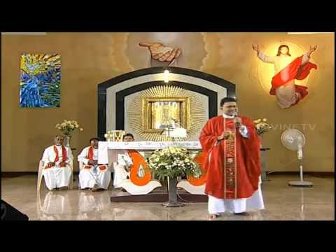 fr augustine vallooran vc be patient with god holy mass homily english