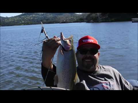 Personal Best Trout At Lake Amador On A Power Worm, Fatty Supper Happy