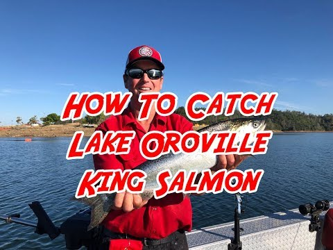 How To Catch Lake Oroville King Salmon
