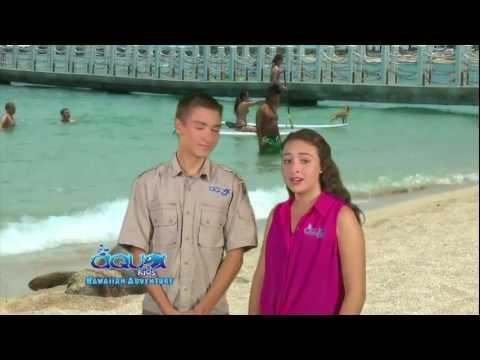 Aqua Kids - Hawaiian Monk Seals - Hawaiian Adventure