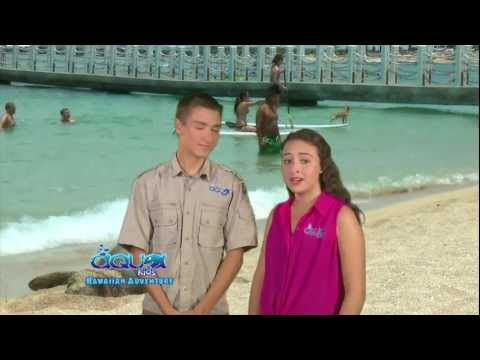 Aqua Kids - Hawaiian Monk Seals - Hawaiian Adventure