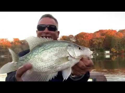 One Hour Challenge - Crappie Fishing - High Rock Lake