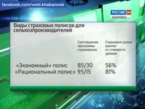Вести-Хабаровск. Страхование сельского хозяйства