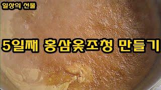 5일째 홍삼 옻조청을 만들다. 홍삼 옻담고 발효홍삼