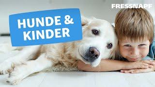 Hunde und Kinder/Babys - Tierisch gute Freunde