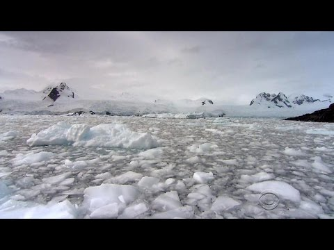Climate Diaries: Shrinking Antarctic ice worries scientists