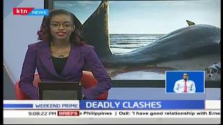Rare fish causes stir in Kwale County