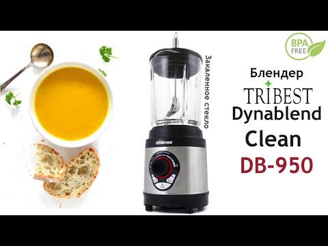 Тыквенный крем-суп в блендере Tribest Dynablend Clean DB-950