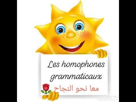 Les homophones grammaticaux - YouTube