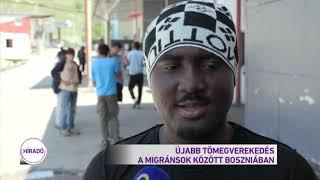 Újabb tömegverekedés a migránsok között Boszniában