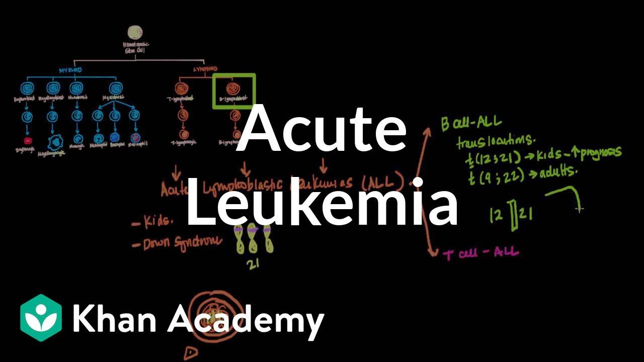 Acute leukemia (video) | Leukemia | Khan Academy