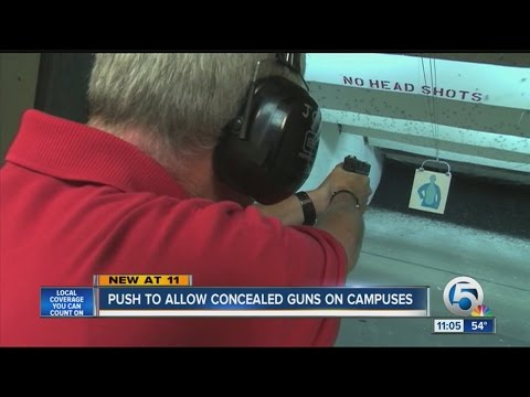 Law to allow concealed carry guns on school campuses
